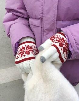 Royal Snow Glove (* 3color)